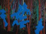 Kim Dorland, Night with Blue Flowers, 2009